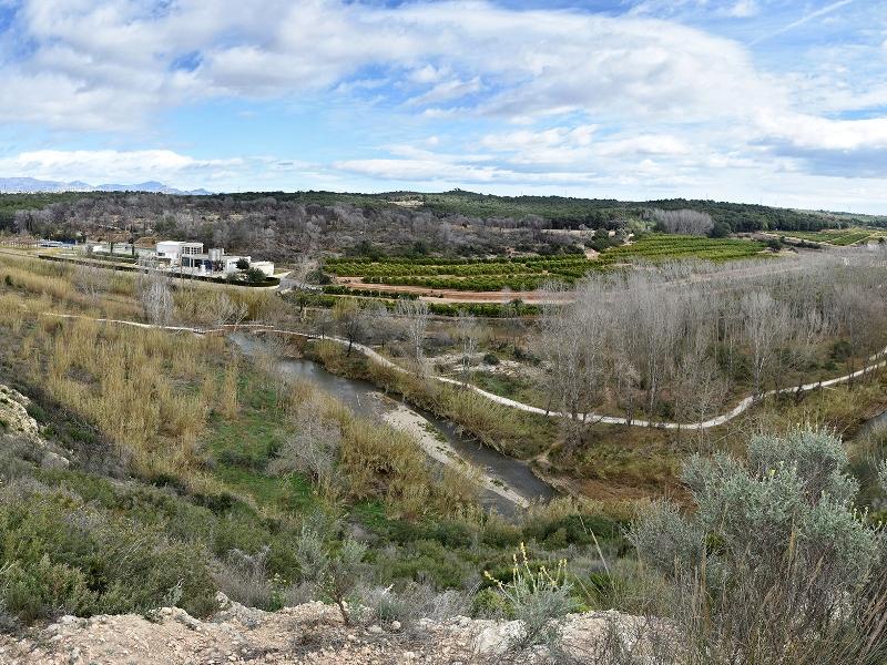 Vista del riu Túria des del jaciment.