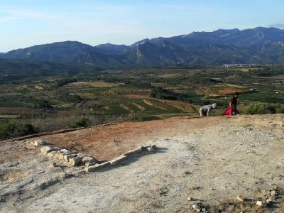 Vista general del jaciment del Coll del Moro de Gandesa.