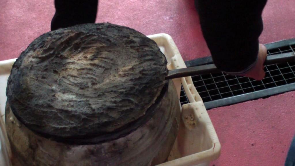 Moment en què s'obre l`àmfora d'argila que havia contingut el vi durant gairebé tres mesos cobert amb una tapa de fusta i una capa de guix (imatge cedida URV)