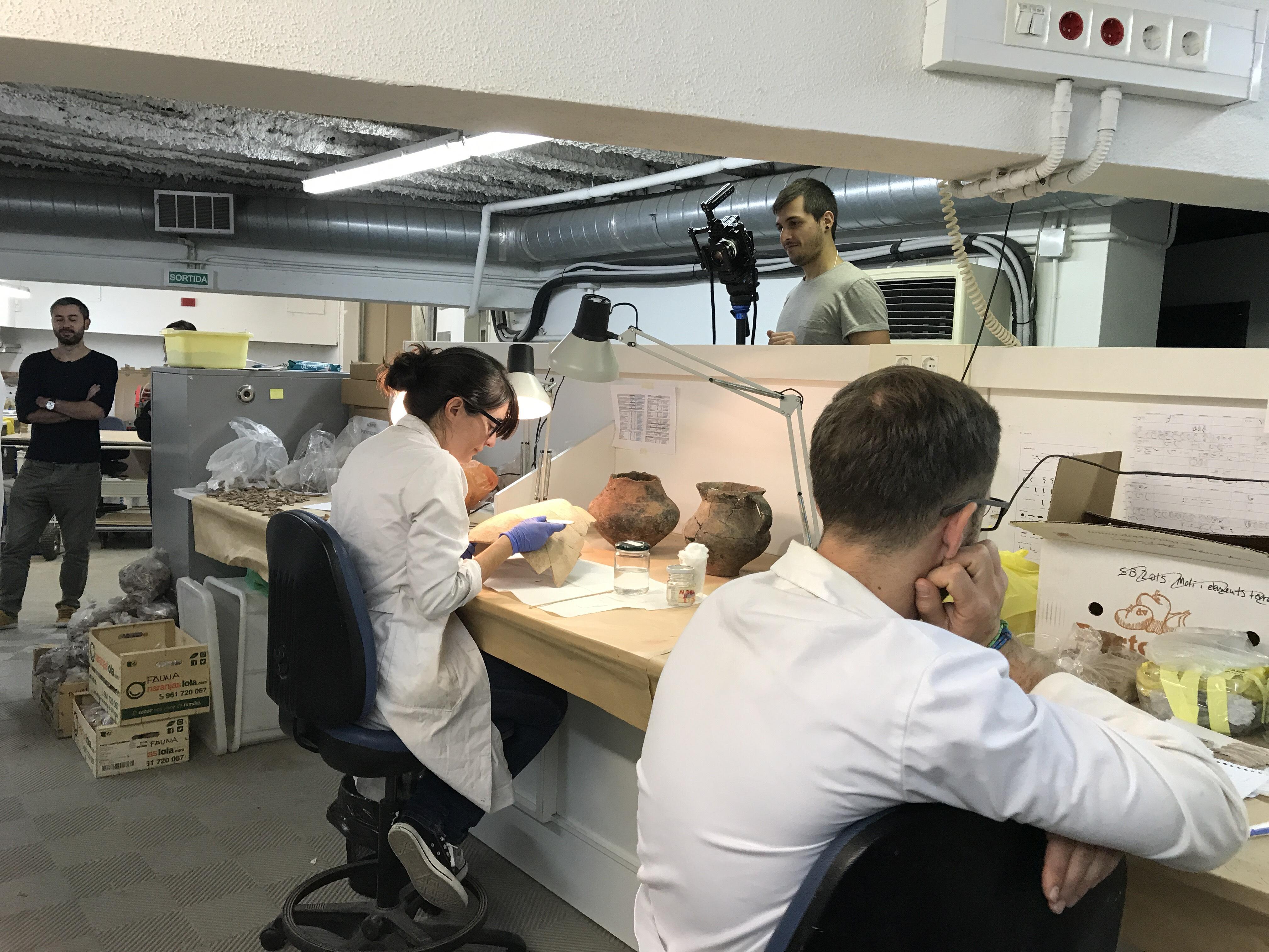 Investigadors treballant al laboratori de l'ICAC. Imatge d'arxiu (© Projecte Digibers)