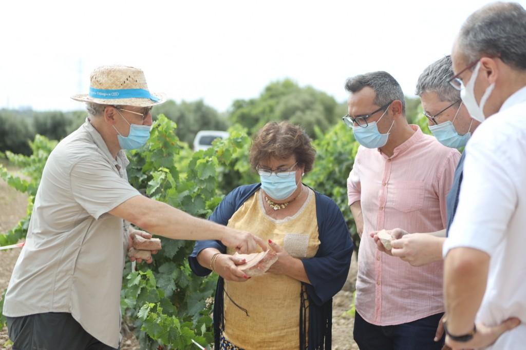 Visita al jaciment de Mas dels Frares, juliol 2020. Josep M. Macias, Maria José Figueras,  Oscar Sánchez, Joan Miquel Canals, Josep M. Palet. Foto: Alba Mariné.