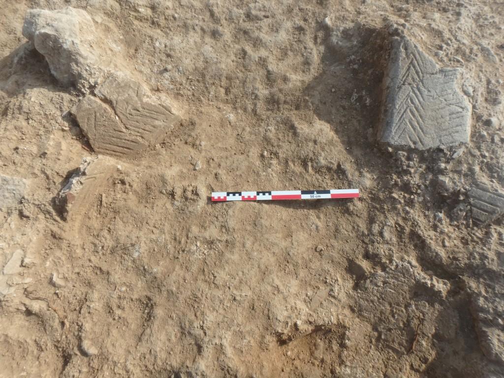 Detall dels fragments fragments d'opus signinum decorats abans de ser extrets de l'estrat. Foto: ICAC.