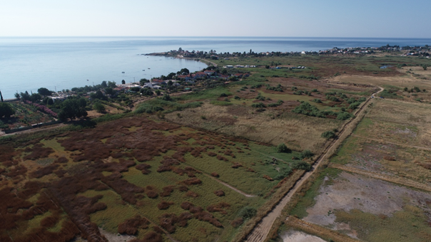 The coastal wetlands around Abdera. Mosquitos apart, there are worse places to be! Photo: GIAP/ICAC