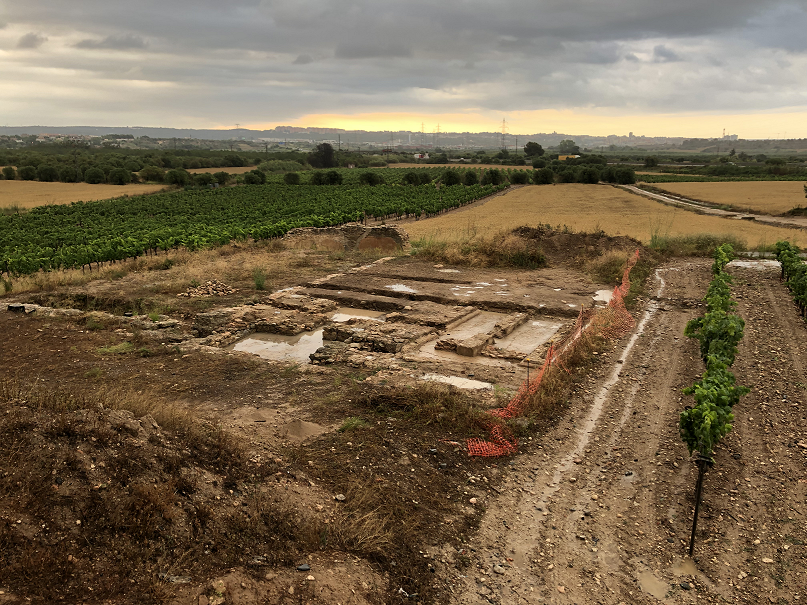Jaciment rural de Mas dels Frares, 2021. Foto: ICAC.