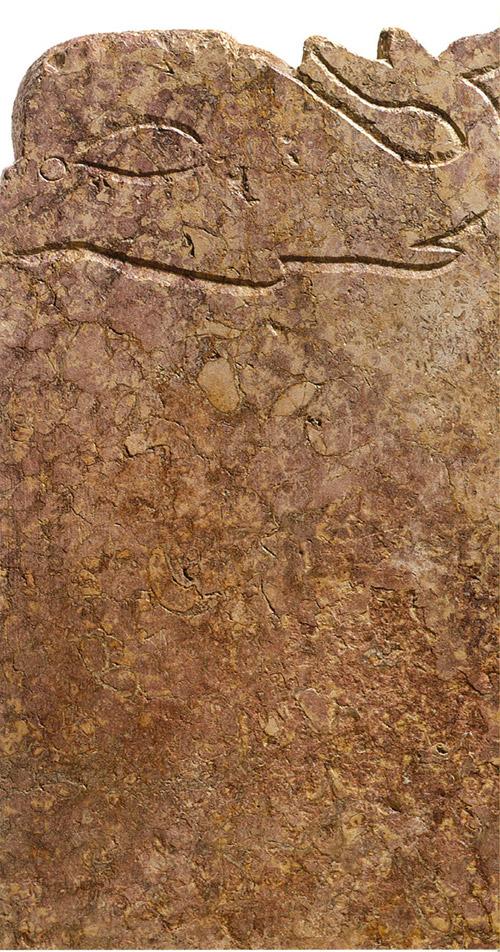 Tarraco: pedra a pedra