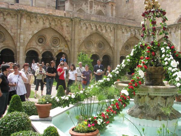 Visita catedral Tarragona
