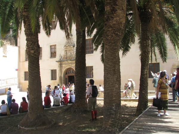 Col·legis Reials Tortosa
